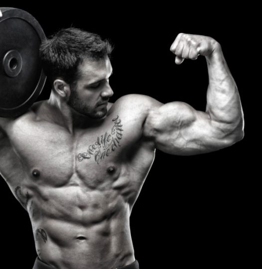 BODYBUILDING NUTRITION  IMAGE